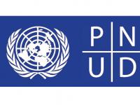 logo-pnud1